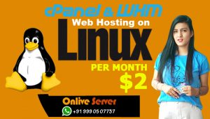 Cpanel Linux Web Hosting